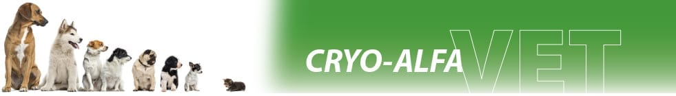 Cryoalfa Cryotherapy For Vet